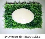 white soap on a green grass...   Shutterstock . vector #560796661
