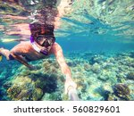 Underwater In The Tropics...