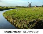 Nedherlands Landscape With...