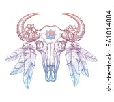 colorful buffalo skull isolated ... | Shutterstock .eps vector #561014884