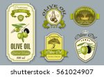 vector vintage style olive oil... | Shutterstock .eps vector #561024907