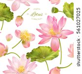 vector botanical seamless... | Shutterstock .eps vector #561027025