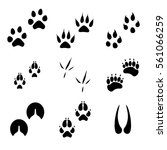 raster illustration animal and... | Shutterstock . vector #561066259