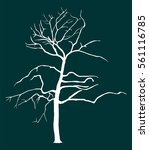 tree vector silhouette... | Shutterstock .eps vector #561116785