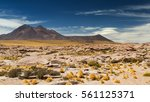 saucer clouds in the atacama... | Shutterstock . vector #561125371