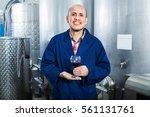 smiling cheerful mature man... | Shutterstock . vector #561131761