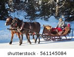 SLOVAKIA, STRBSKE PLESO - JANUARY 05, 2015: Horse sleigh carriage in Strbske Pleso. The village is a favorite ski, tourist, and health resort in the slovakian part of High Tatras mountains. - stock photo