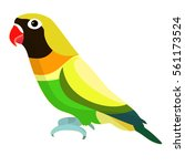 lovebirds parrot with a red... | Shutterstock .eps vector #561173524