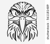 eagle head logo template  hawk... | Shutterstock .eps vector #561181489