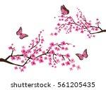 vector illustration of cherry... | Shutterstock .eps vector #561205435