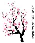 vector illustration of cherry... | Shutterstock .eps vector #561205471