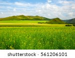 the natural scenery of the... | Shutterstock . vector #561206101