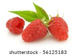 Raspberry with leaves - stock photo