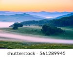 the landscape of  meadow steppe ... | Shutterstock . vector #561289945