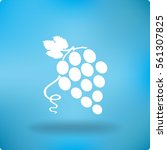 flat icon grapes.   Shutterstock .eps vector #561307825