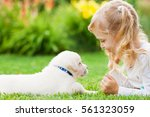 Stock photo little girl with a labrador puppy outdoor summer 561323059