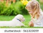 Little Girl With A Labrador...