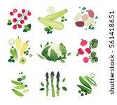 clip art illustration of... | Shutterstock .eps vector #561418651