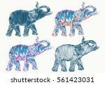 elephant line art collection... | Shutterstock .eps vector #561423031