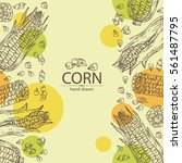 Background With Corn . Hand...
