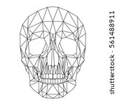 human skull  cranium  abstract... | Shutterstock .eps vector #561488911