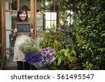 flower shop store florist... | Shutterstock . vector #561495547