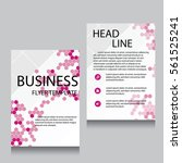 vector brochure flyer design... | Shutterstock .eps vector #561525241