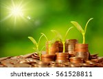 money growing concept business...   Shutterstock . vector #561528811