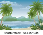 tropical landscape  palm tree... | Shutterstock .eps vector #561554035