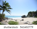 beach | Shutterstock . vector #561602779