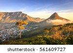 Lions Head Mountain In Cape...