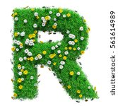 Letter R Of Green Grass And...