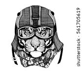 Vintage Image TIGER for t-shirt design for motorcycle, bike, motorbike, scooter club, aero club
