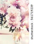 lovely peonies bunch in glass... | Shutterstock . vector #561719239