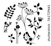 hand drawn vintage floral... | Shutterstock .eps vector #561729661
