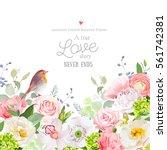 hydrangea  rose  peony  poppy ... | Shutterstock .eps vector #561742381