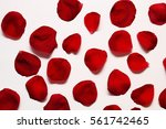 Stock photo petals of a red rose on a white wooden table 561742465