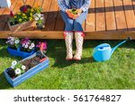 woman gardener wearing... | Shutterstock . vector #561764827