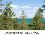 pines and beauty lake - stock photo