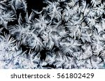 crystal white frost pattern on...   Shutterstock . vector #561802429