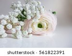 close up of wedding bouquet... | Shutterstock . vector #561822391