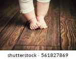 baby feet doing the first steps.... | Shutterstock . vector #561827869