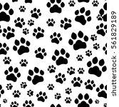 paw print seamless. traces of... | Shutterstock .eps vector #561829189