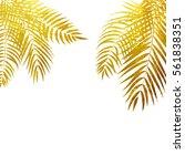beautifil palm tree leaf ...   Shutterstock .eps vector #561838351