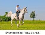 Rider On Gray Arabian Horse In...