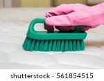 mattress chemical cleaning with ... | Shutterstock . vector #561854515