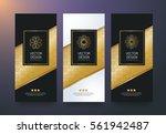 vector set packaging templates... | Shutterstock .eps vector #561942487