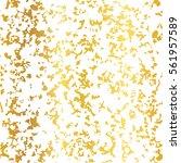 vector golden on white abstract ... | Shutterstock .eps vector #561957589