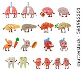 human organs healthy and... | Shutterstock .eps vector #561982201