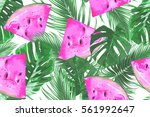 watermelons  tropical palm... | Shutterstock .eps vector #561992647